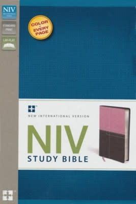 Bible NIV Study Bible Standard Italian Duo-Tone Berry Creme / Chocolate