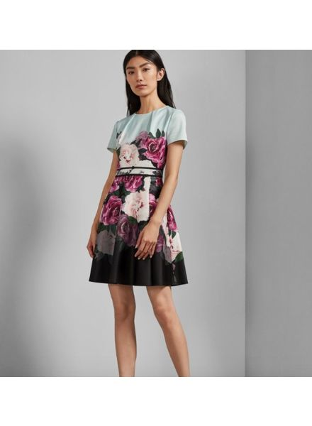 Ted Baker Magnificent Skater Dress