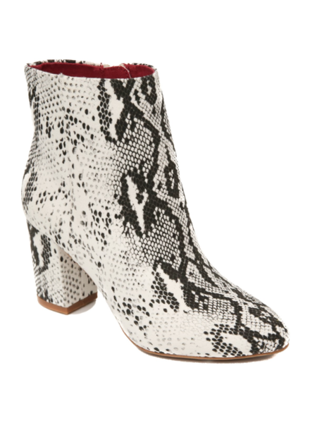Band of Gypsies Footwear Andre Snakeskin Bootie