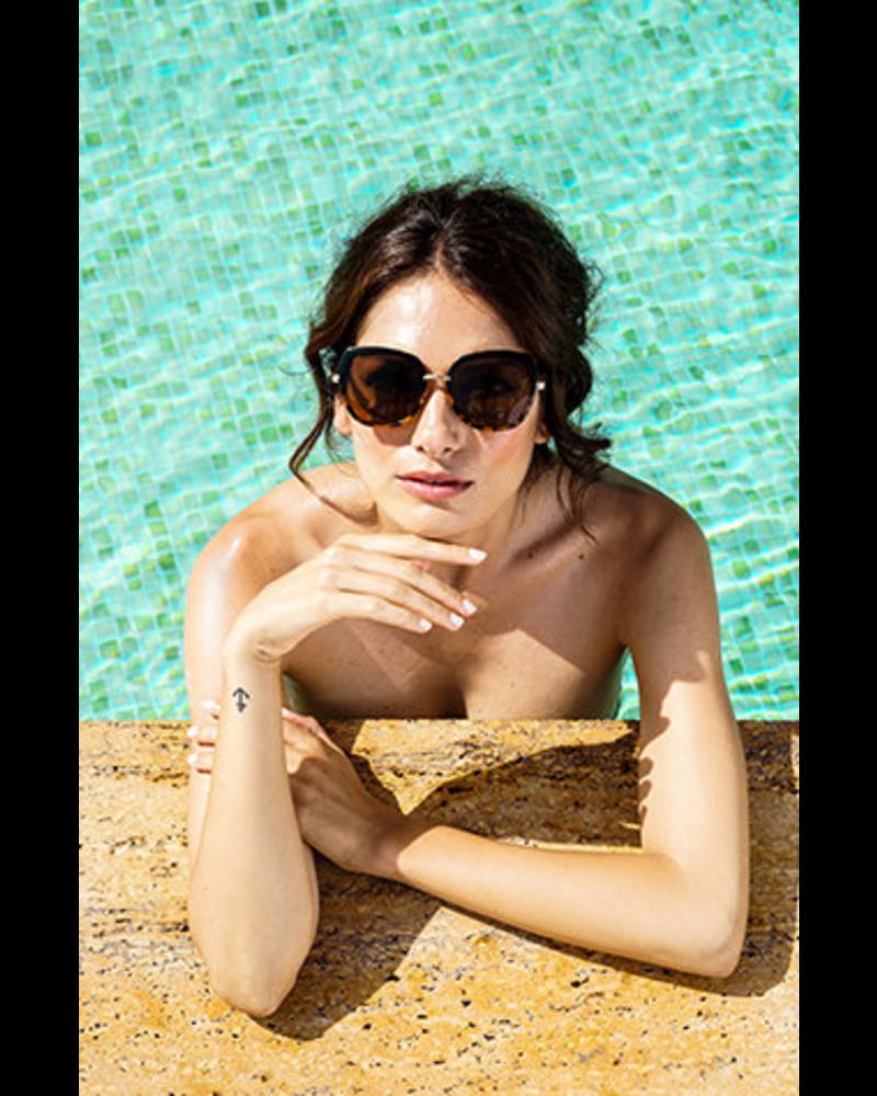Powder Design Sunglasses