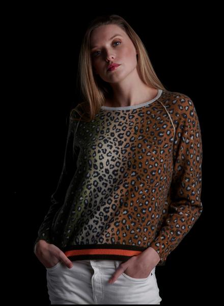 Brodie Suzie Stripe Leopard
