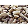 Brazil Nut