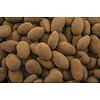 Albanese Cocoa Almonds
