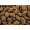 Cocoa Almonds
