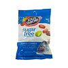Sugar Free Jolly Rancher 102g
