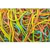 Lacet multicolore sûr Razz Matazz