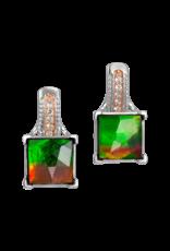 Raye Earrings - SE3066TF