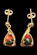 Pearl Gold Earrings - E2020PF14