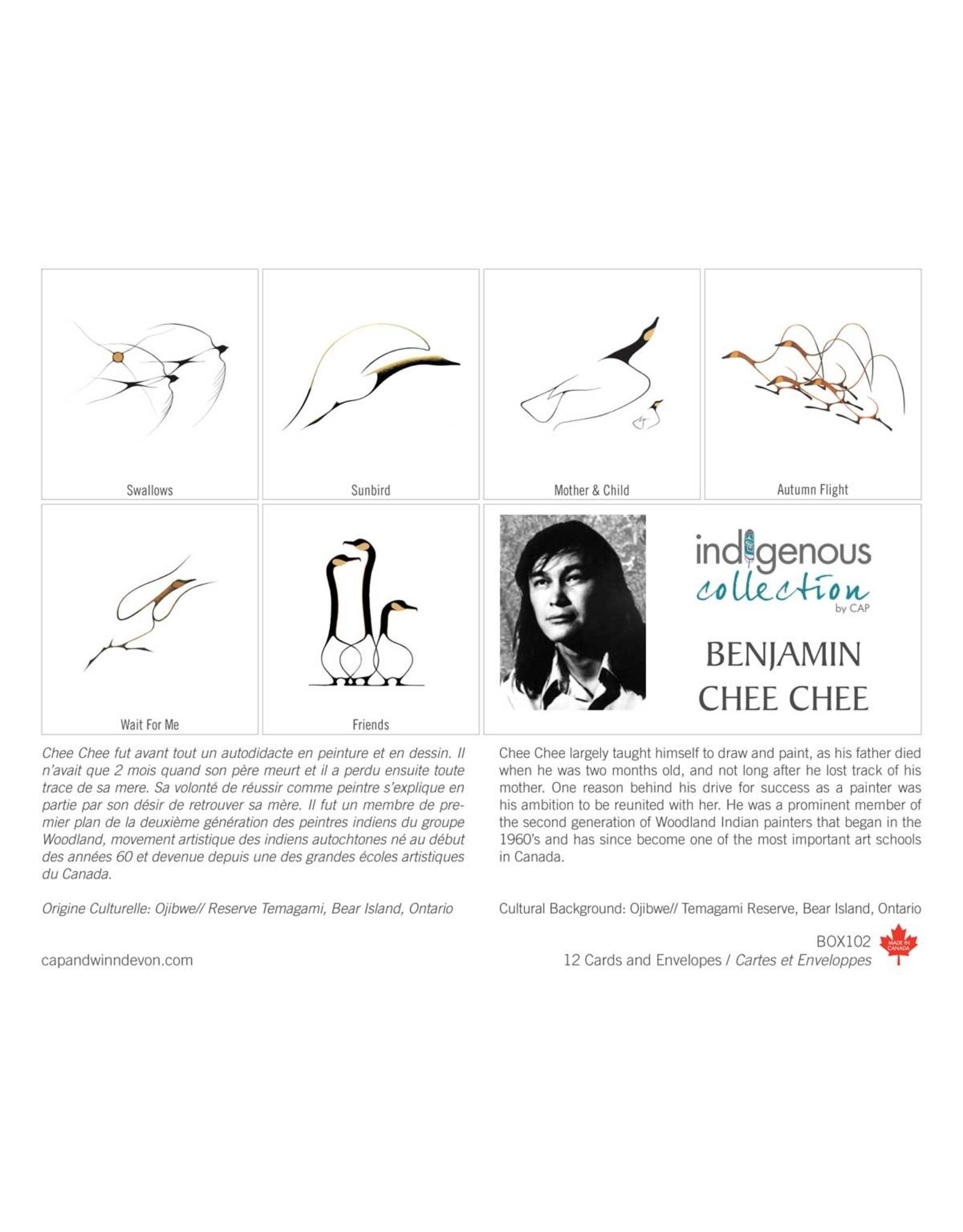 Boîte de 12 Cartes Benjamin Chee Chee - Boîte 102