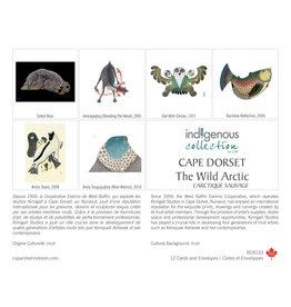 Boîte de 12 Cartes L'Arctique Sauvage - Boîte 103