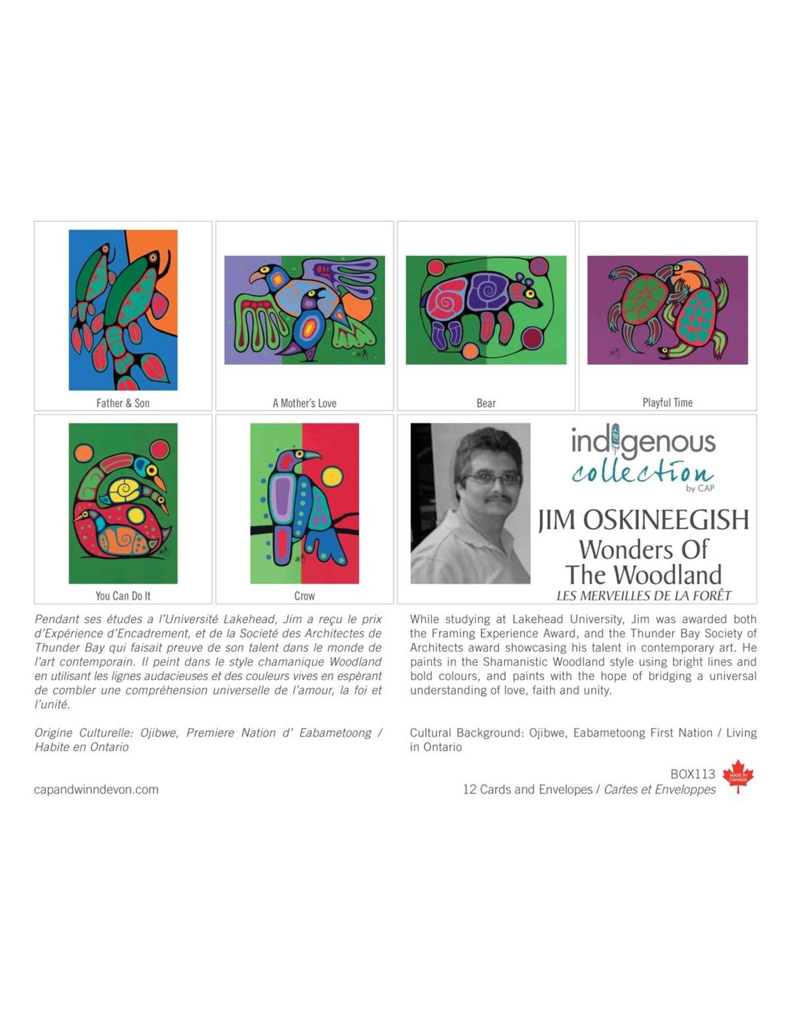 Boîte de 12 Cartes Les Merveilles de la Forêt - Boîte 113