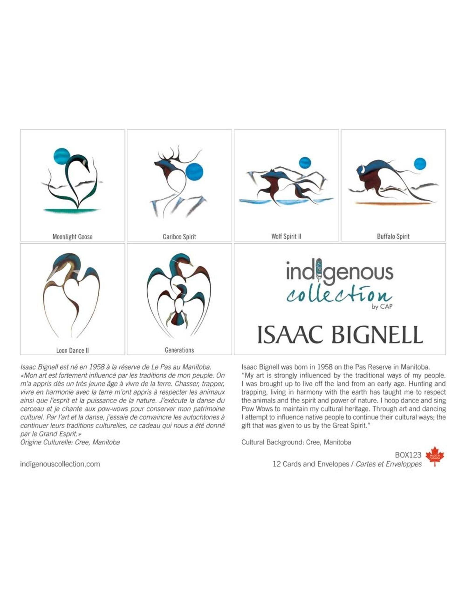 Isaac Bignell 12 Card Box - Box 123