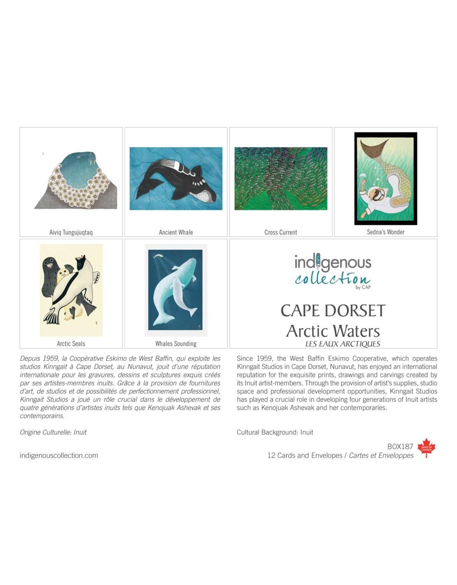 Arctic Waters 12 Card Box - Box 187