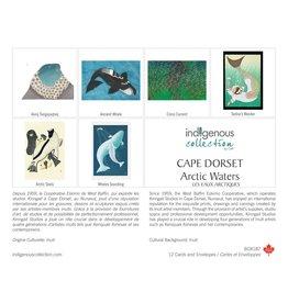 Boîte de 12 Cartes Les Eaux Arctiques - Boîte 187