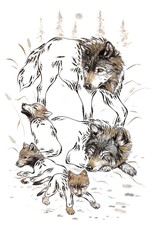 Wolf Family by Ernest Cobiness Card