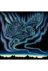 Sky Dance - Owl by Amy Kellar-Rempp Card
