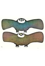 Owls of the Night by Pitaloosie Saila Card