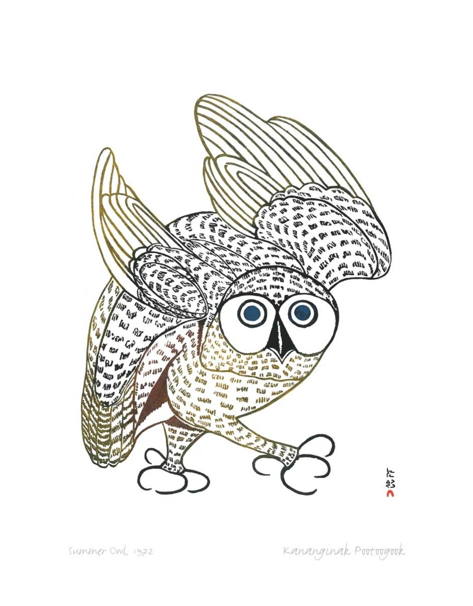 Summer Owl 1972 by Kananginak Pootoogook Framed