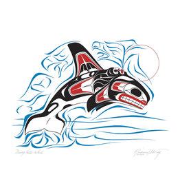 Diving Killer Whale by Richard Shorty Framed