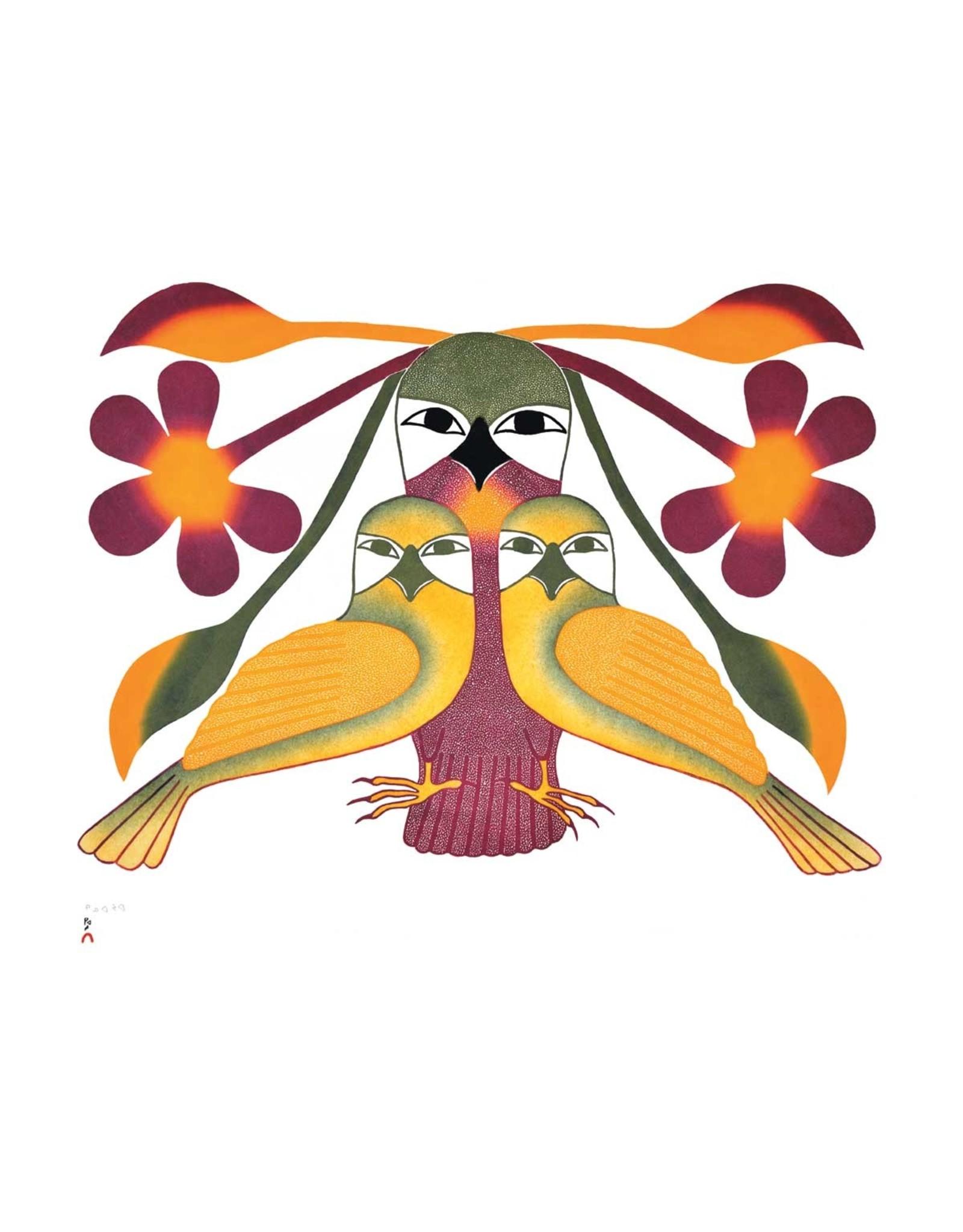 Resplendent Owls by Kenojuak Ashevak Card