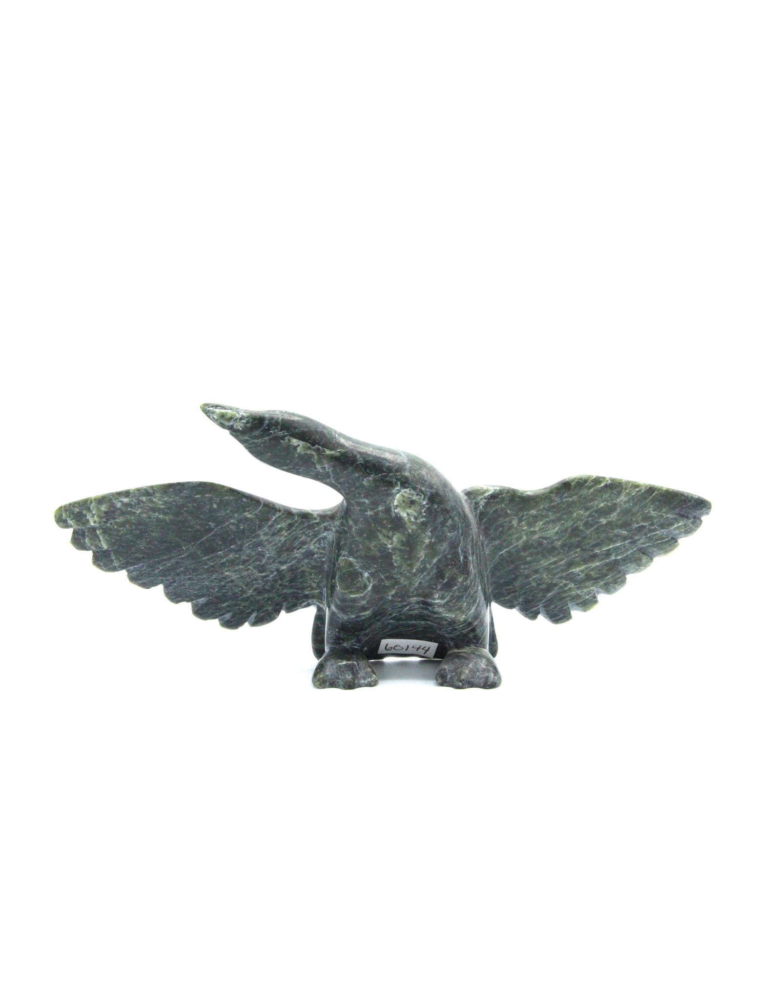 60144 Bird par Ottokie Samayalie