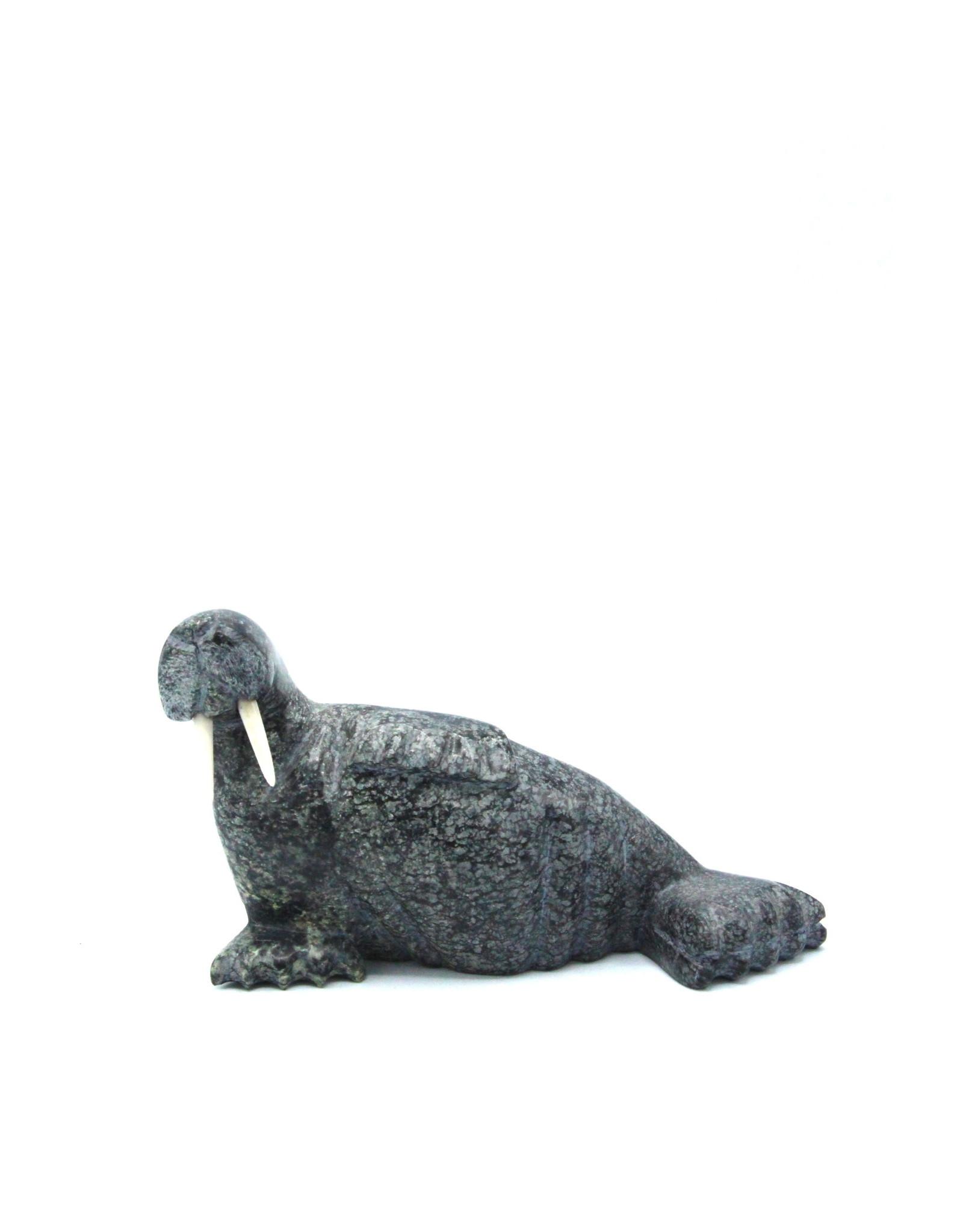 64150 Walrus by Appa Peter