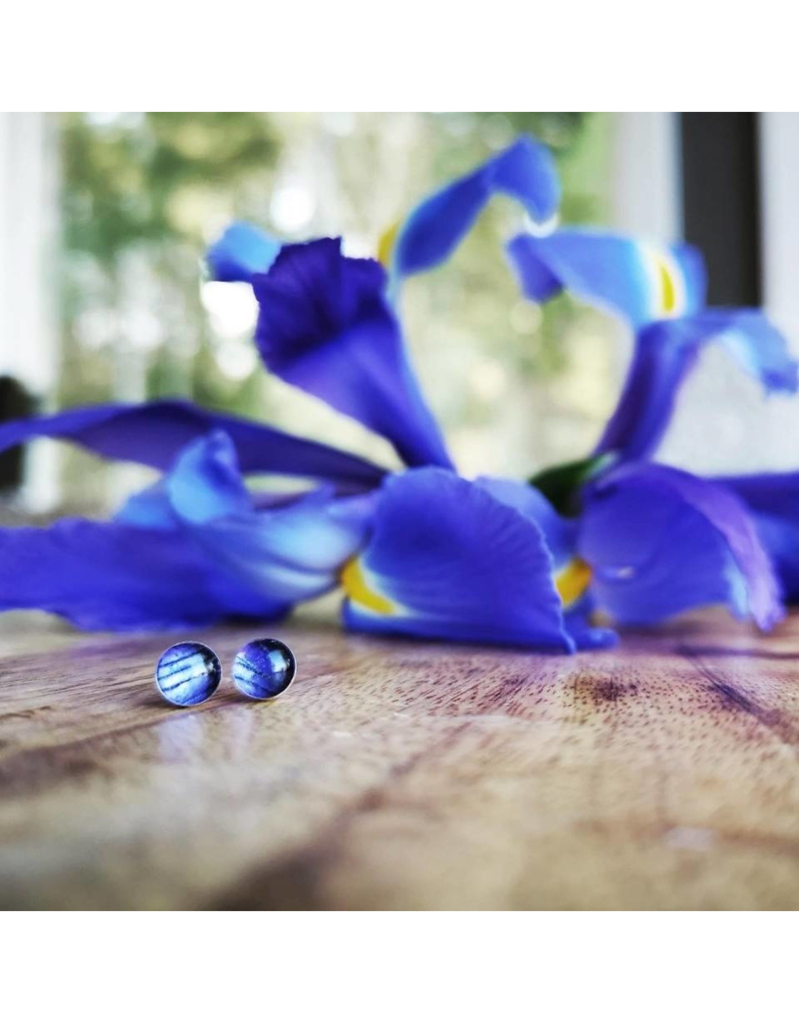 Quebec Blue Flag Iris 4mm Silver Earrings - QC0504S
