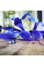 Quebec Blue Flag Iris 5mm Gold Plated Earrings - QC0505G
