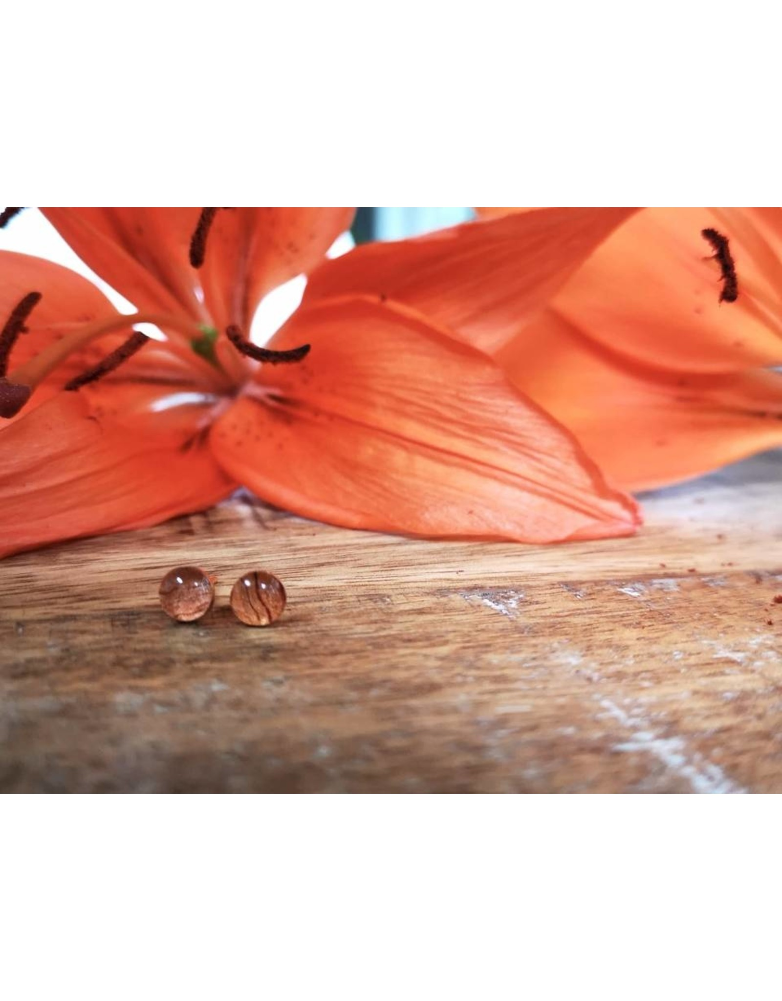 Saskatchewan Tiger Lily 4mm Silver Earrings - SK0504S