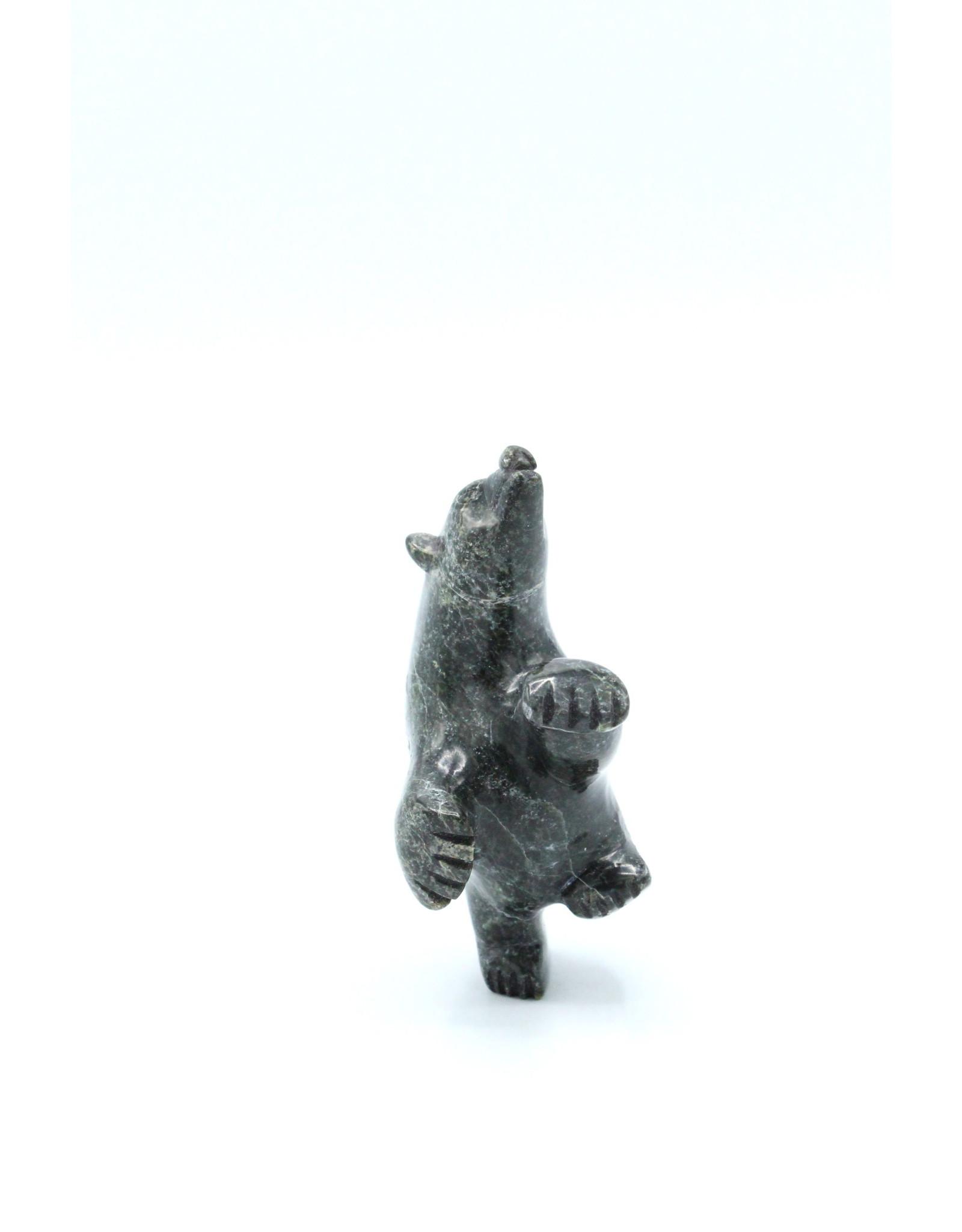 Bear 66806 by David Shaa