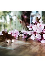Boucles d'Oreilles Argent 5mm Fleur de Cerisier de B.C - VCB0505s