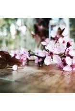 Bagues Fleur de Cerisier de B.C - CBSR