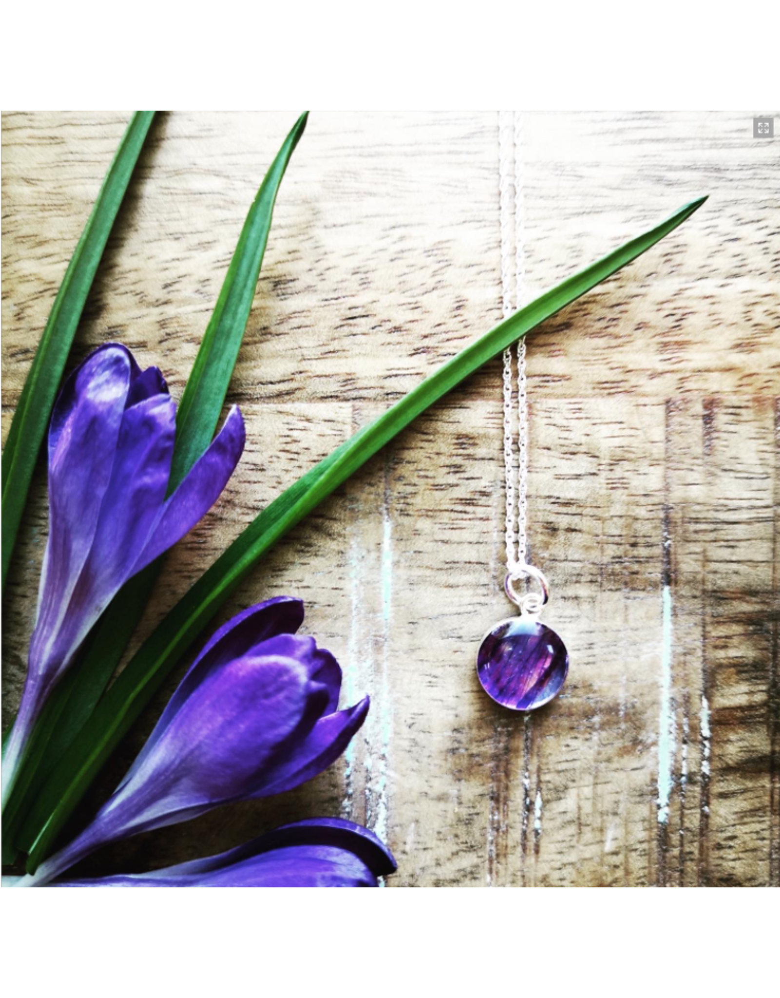 Manitoba Prairie Crocus 10mm Silver Necklace - MB0110S