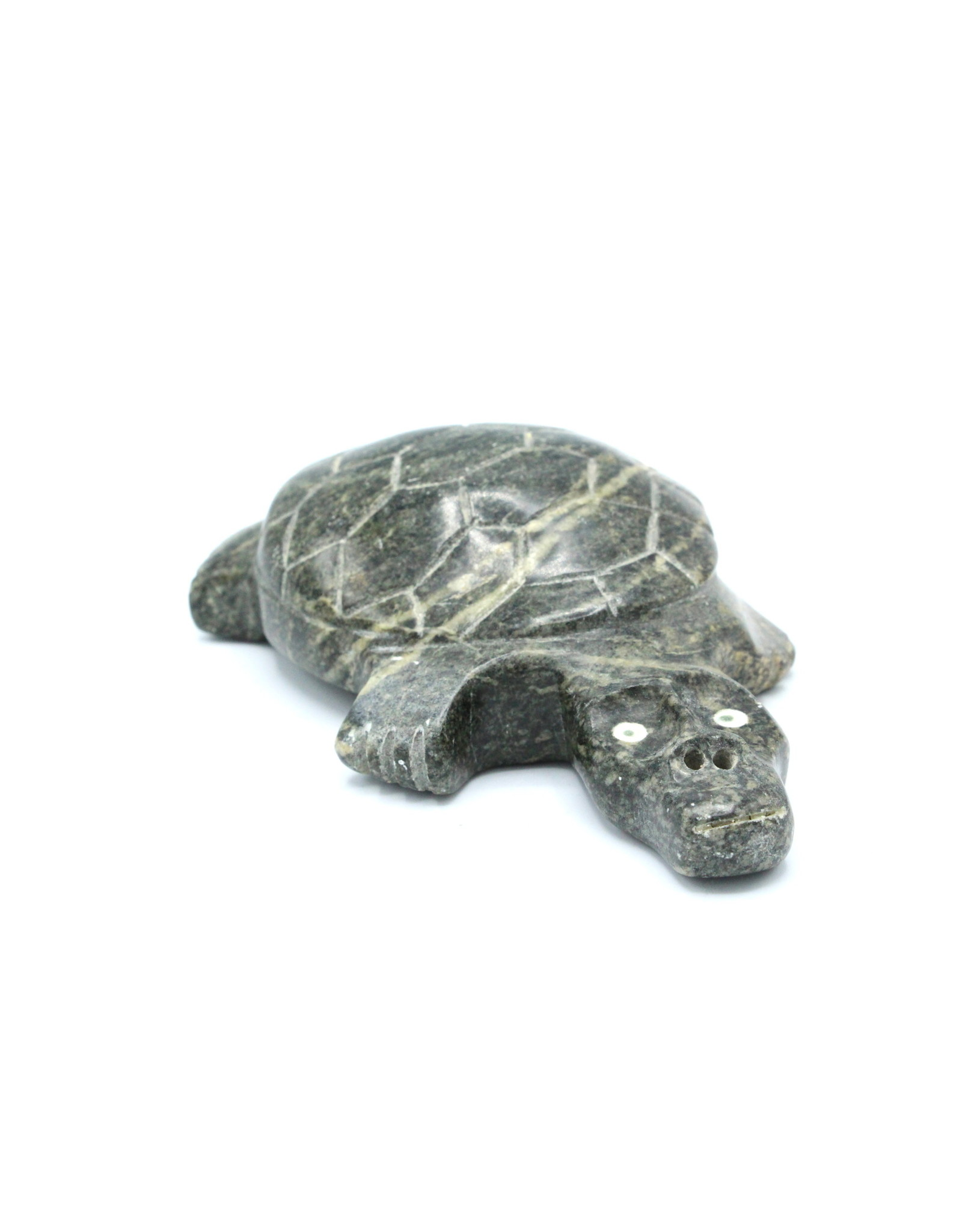 110118 Turtle par Nancy Kuptana
