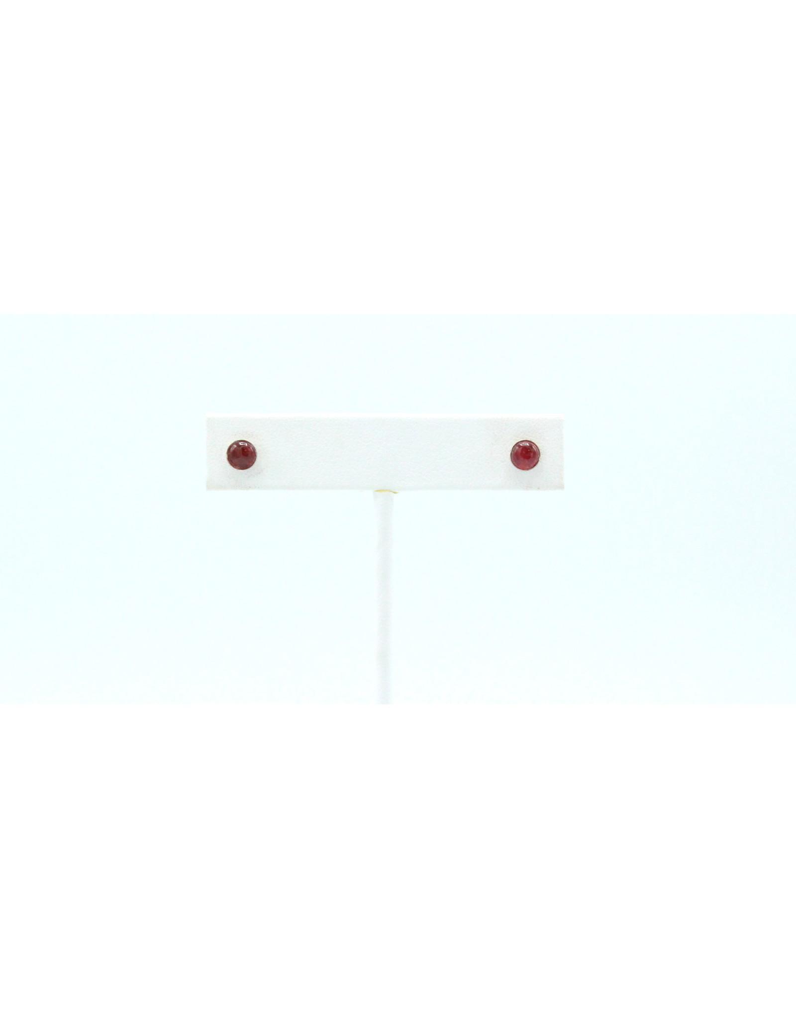 Eudialyte Earrings - EEU01