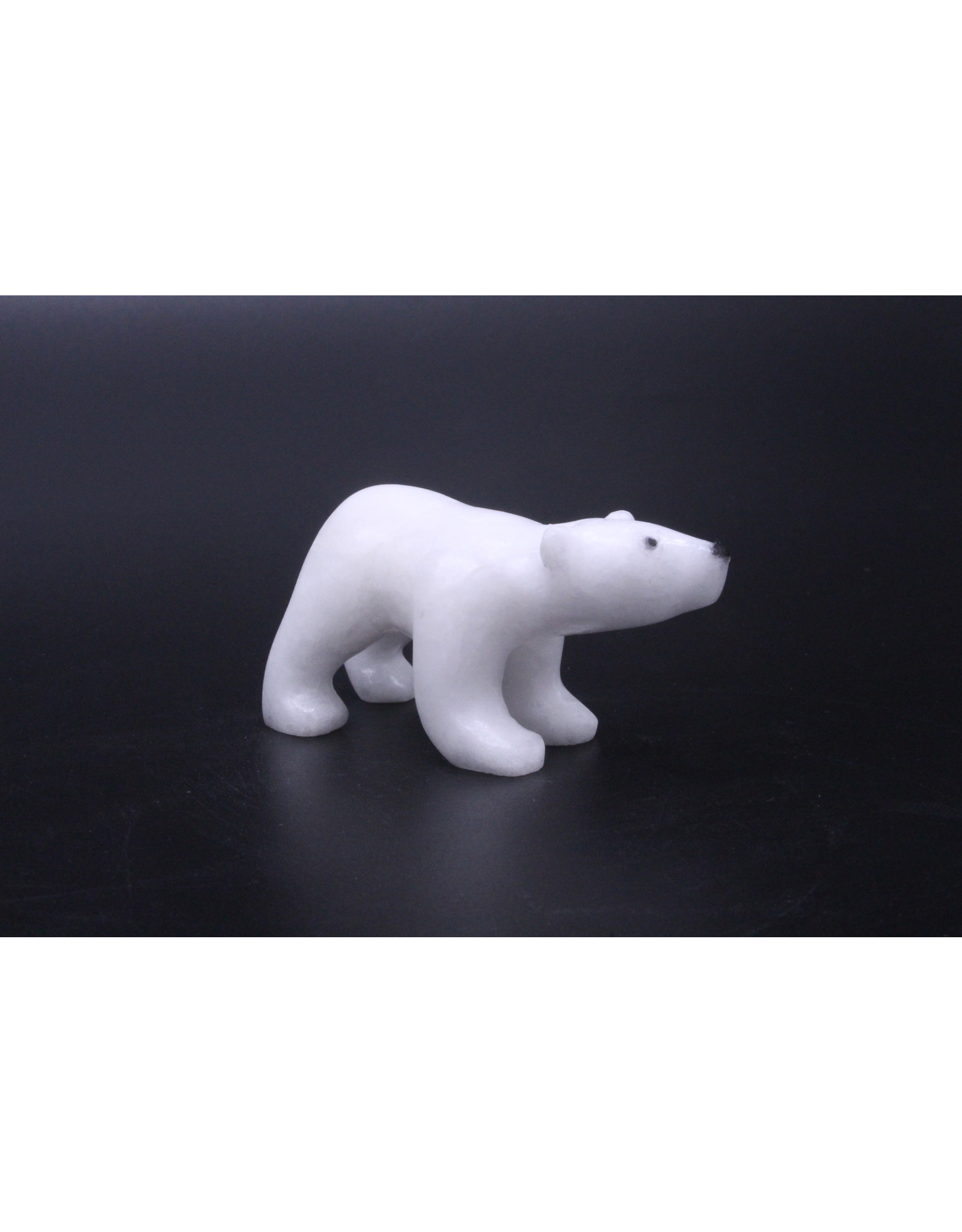 Bear by Peter John Mitchell - 8412