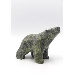 Bear by Tony Oquitaq