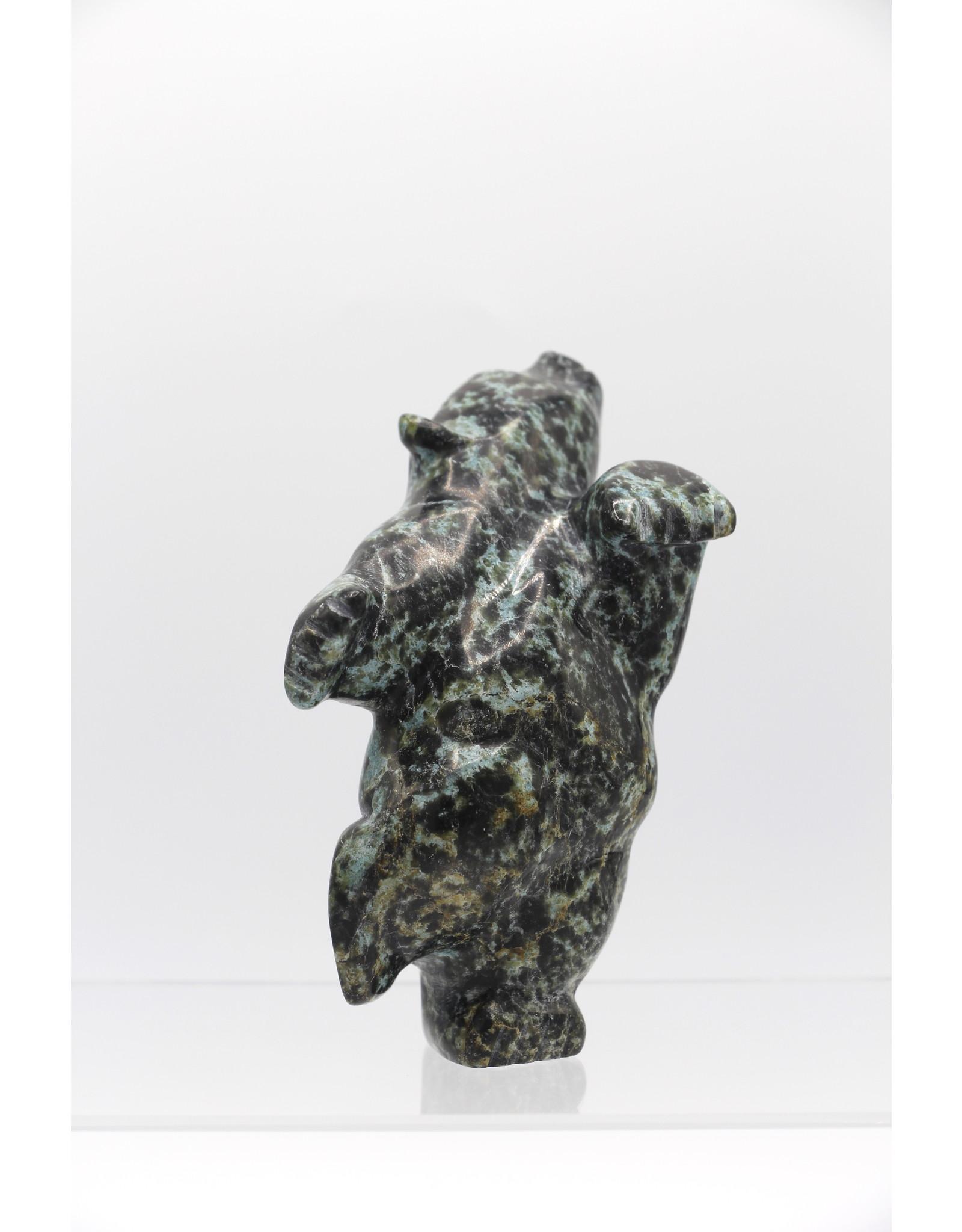 18587 Dancing Bear by Johnny papigatuk