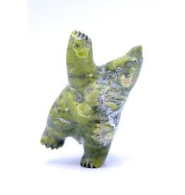 Bear by Samonie Shaa