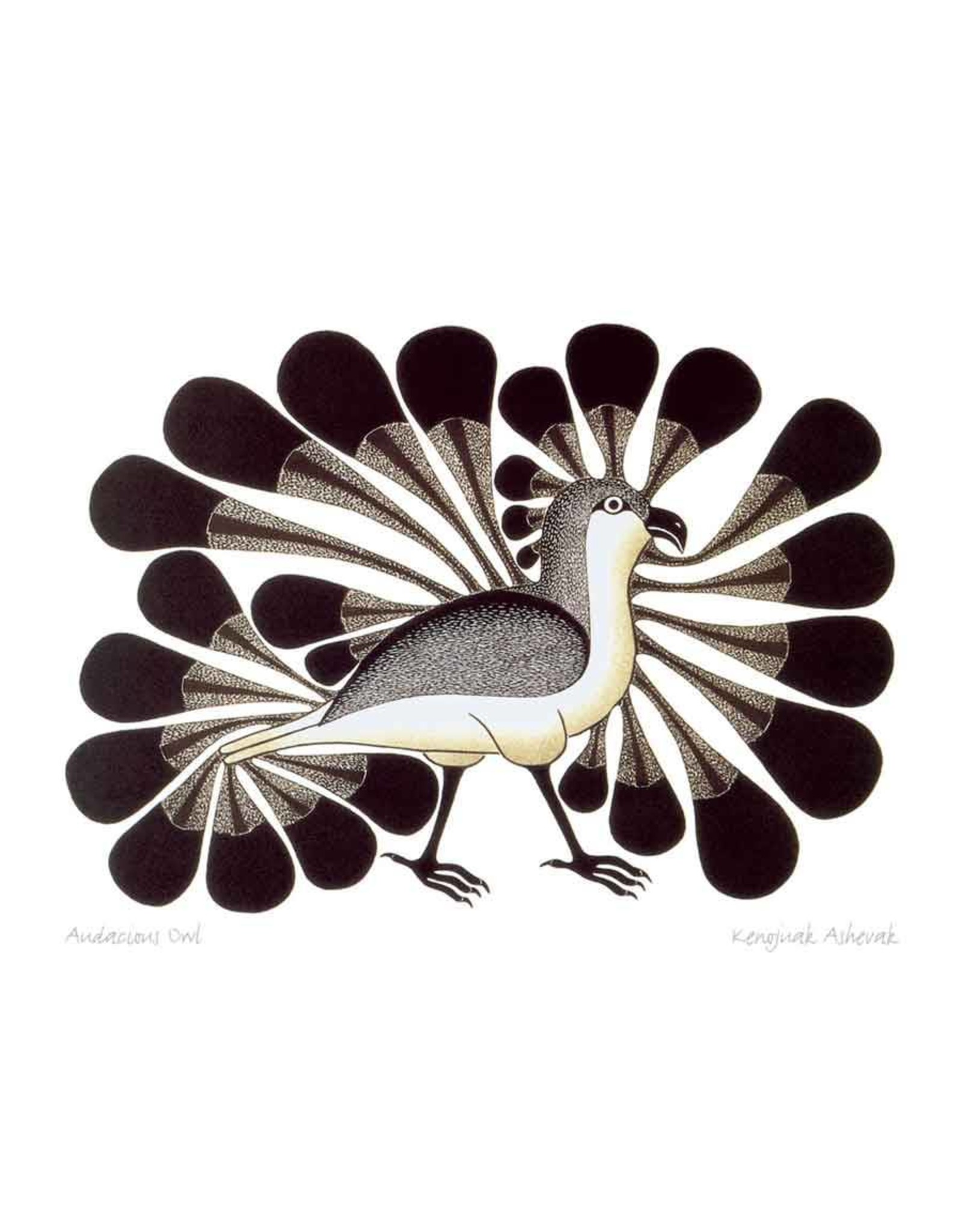 Audacious Owl by Kenojuak Ashevak Card