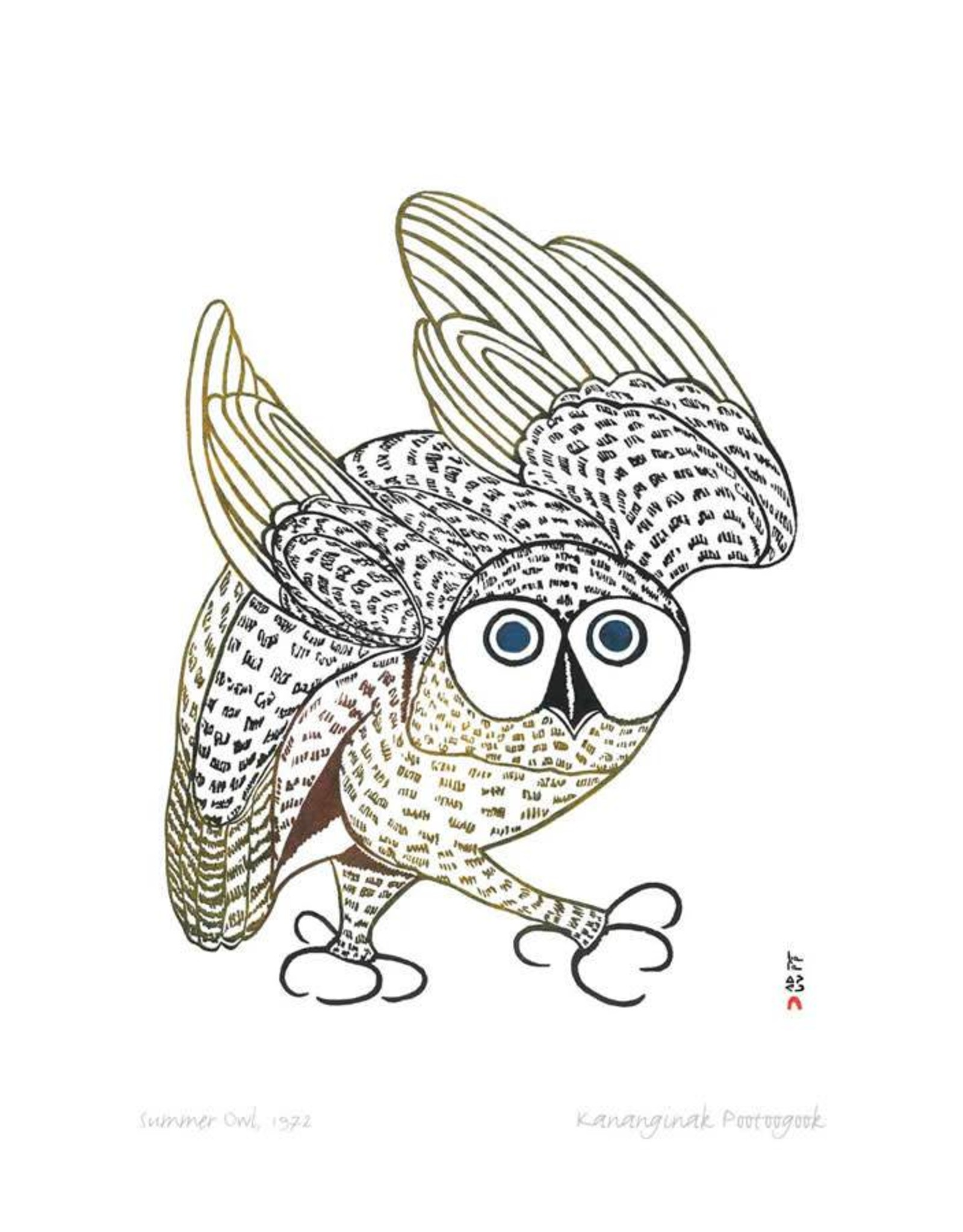 Summer Owl, 1972 by Kananginak Pootoogook Card