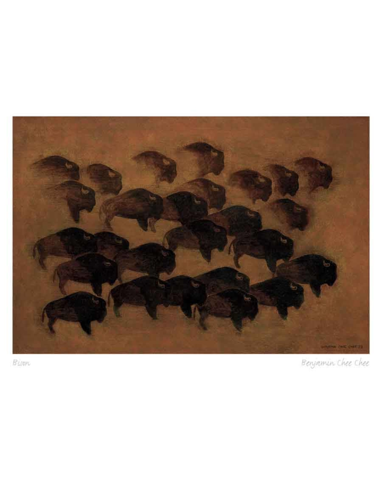 Bison by Benjamin Chee Chee Matted