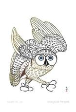 Summer Owl 1972 by Kananginak Pootoogook Matted