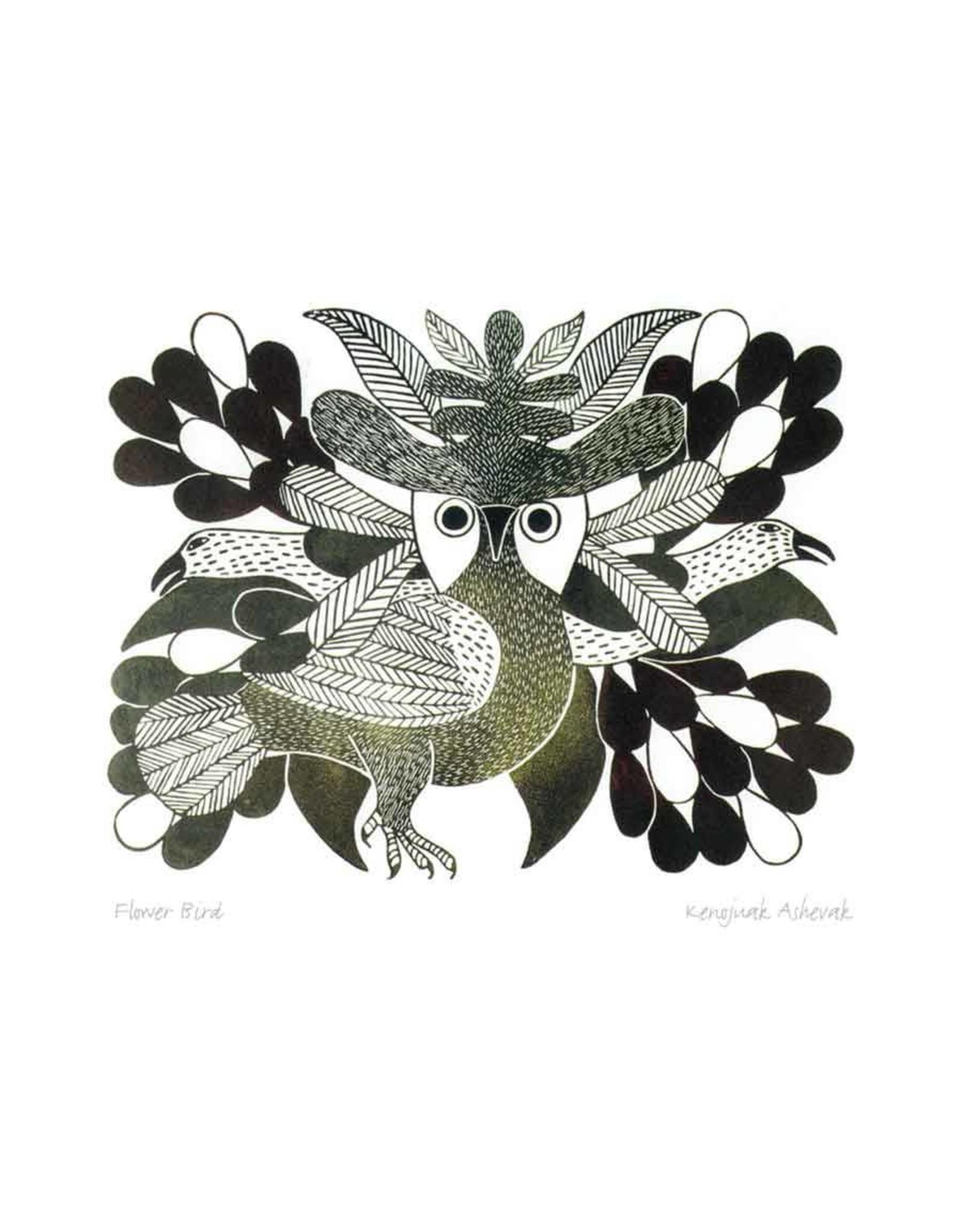 Flower Bird by Kenojuak Ashevak Framed
