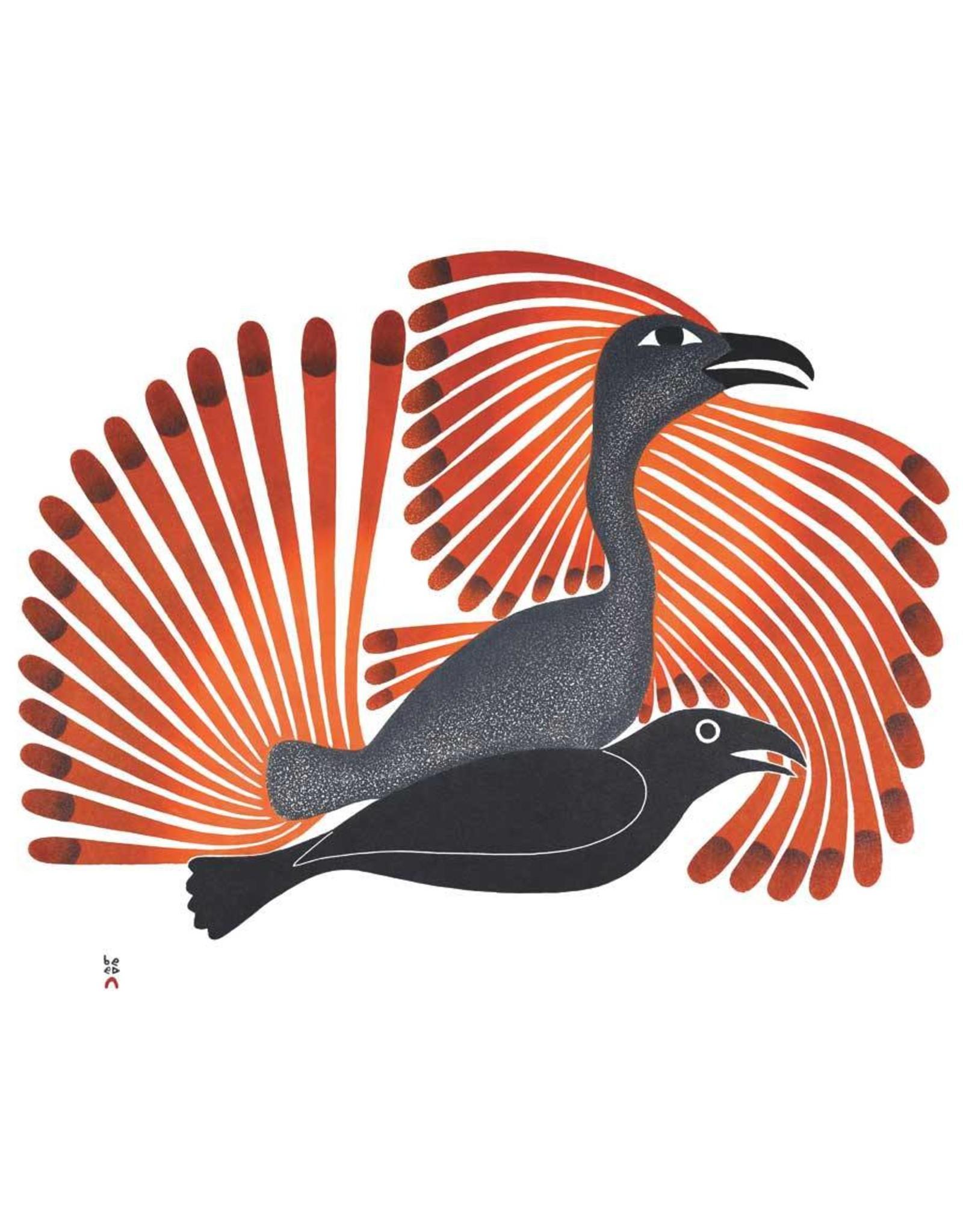 Intruding Raven, 2001 by Kenojuak Ashevak Framed