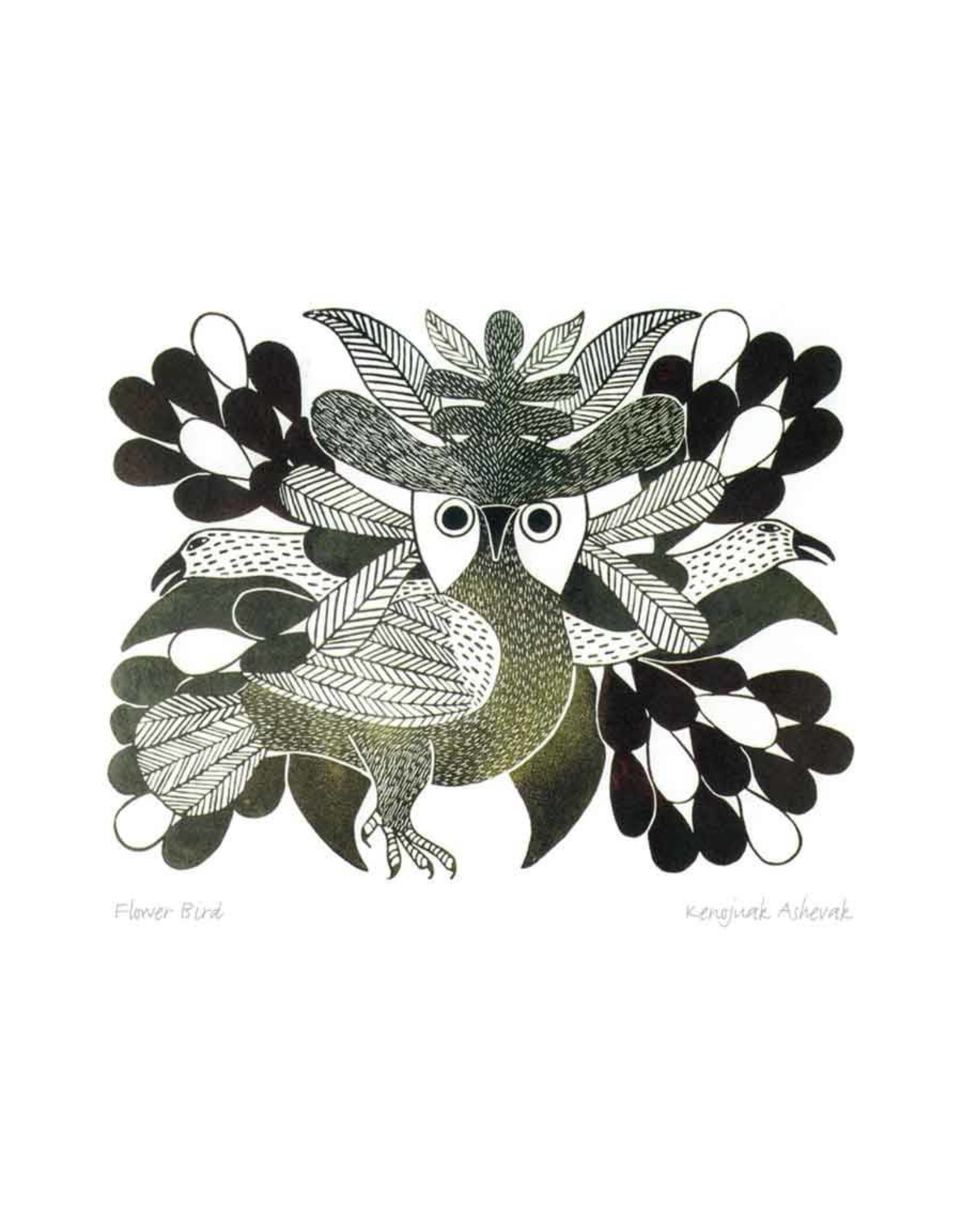 Flower Bird by Kenojuak Ashevak Matted