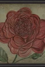 Vintage Rose in Black Frame, Red - 33.5 Inch x 33.5 Inch