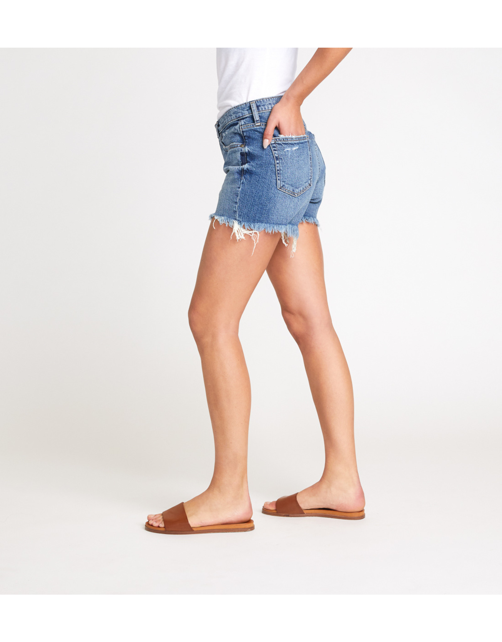 Silver Jeans - Not Your Boyfriends Shorts
