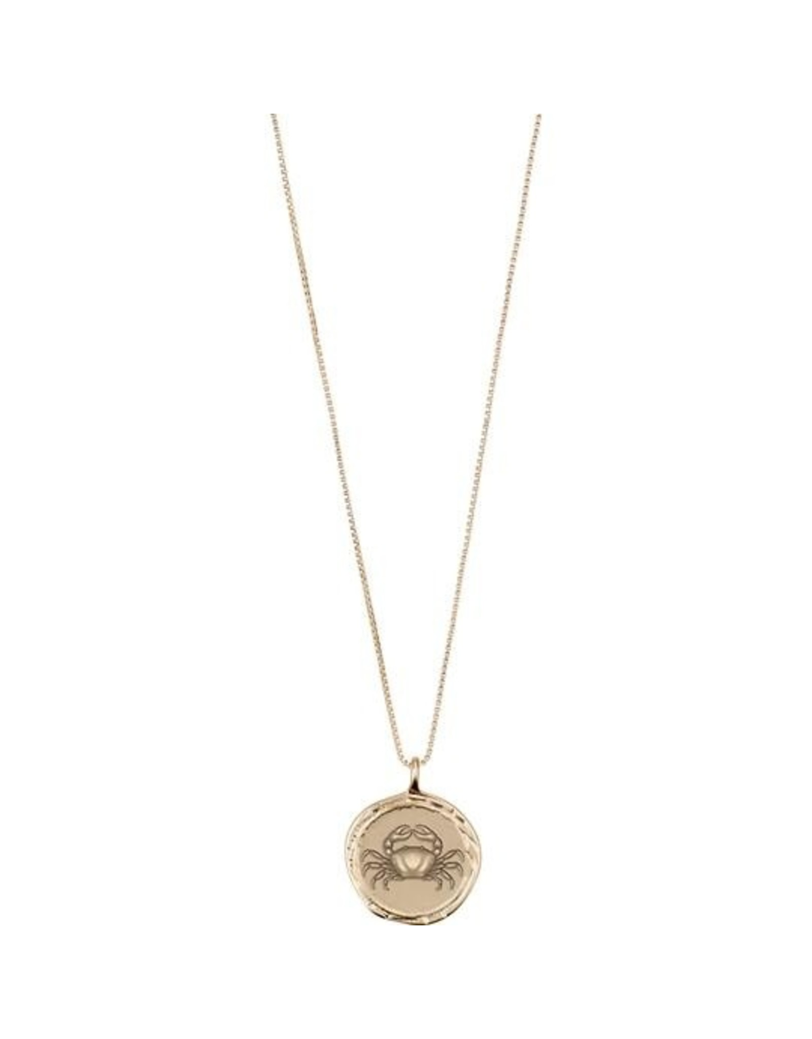 Pilgrim - Horoscope Double Sided Necklace (Gold Collection)