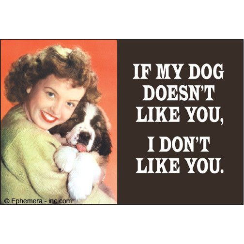 If My Dog Doesn't Like You Magnet